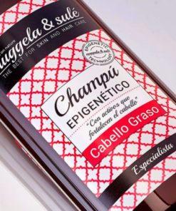 Nuggela & Sule Champú Epigenético para Cabello Graso