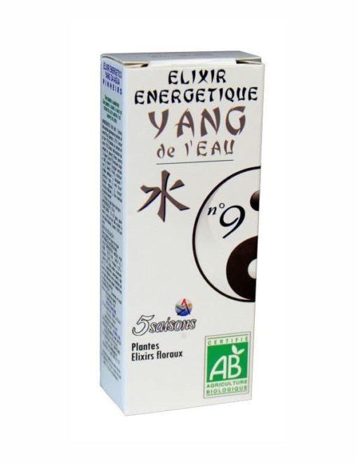 5 Saisons Elixir 09 Yang del Agua (Pino)