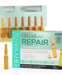 Dhyvana Celular Repair